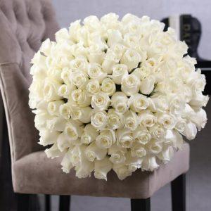 101 роза белая цвет