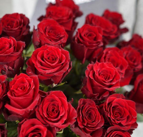 25 роз букет доставка