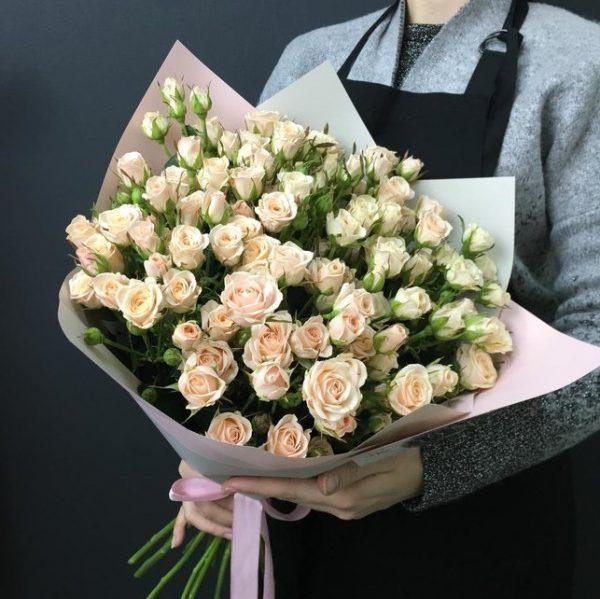 Роза кустовая Новосибирск