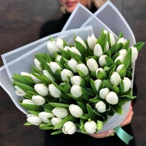 Тюльпаны Доставка Новосибирск 51 шт.