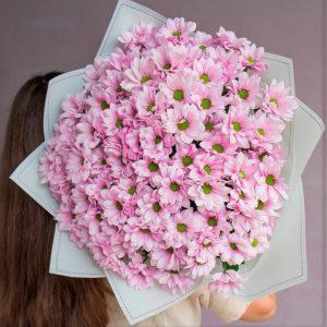 Хризантема микс цветы