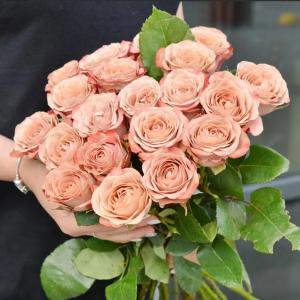 21 роза капучино с доставкой