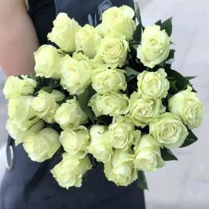 Роза Mондиаль (Mondial) белая