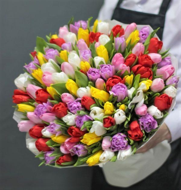 101 Тюльпан Новосибирск