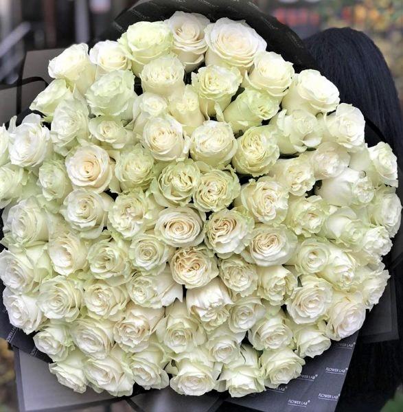 101 Роза Новосибирск Белая