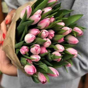 31 розовый тюльпан букет