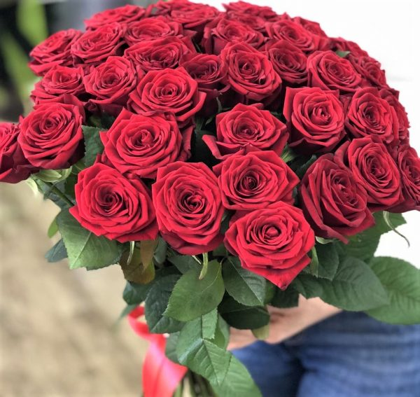 33 роз Красных