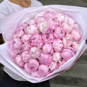 39 крупных розовых пионов