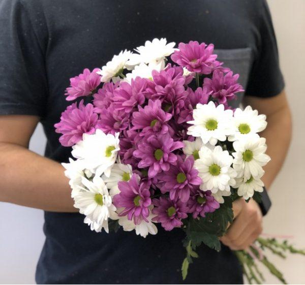 Хризантема кустовая 7 шт