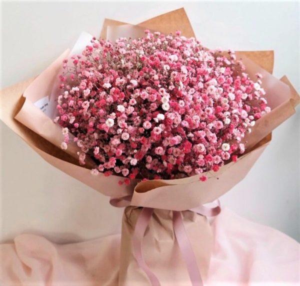 Ярко розовая гипсофила в пленке